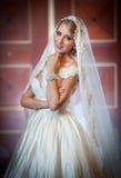 摆在豪华内部的婚礼礼服的年轻美丽的豪华妇女 有长的面纱的华美的典雅的新娘 全长 库存图片