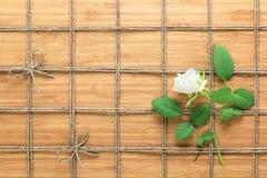 摆正在一朵木背景和白色玫瑰的被排行的绳索样式与叶子被交织在它之间 自然题材的纹理 免版税库存图片