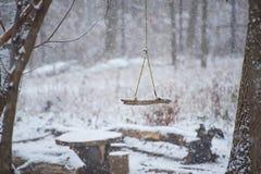 摇摆在一个公园在冬天 库存照片