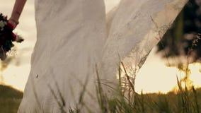 摇摆在微风的新娘在公园在日落 股票视频