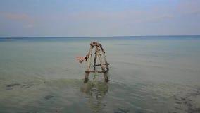 摇摆在摇摆的女孩在海 水摇摆 失去的天堂无人居住的海岛 ?? 股票视频