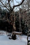 摇摆在森林里在一个冬天晚上 库存照片