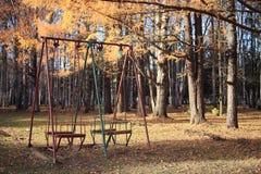 摇摆在秋天公园 免版税库存照片