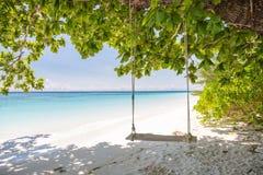 摇摆在美丽的透明的海和白色沙子海滩在Tachai海岛,安达曼 免版税图库摄影