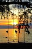 摇摆的剪影,在热带海滩 免版税库存图片