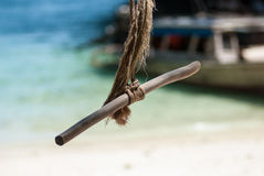 摇摆从大树的吊在海滩, Krabi,泰国 库存照片