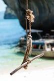 摇摆从大树的吊在海滩, Krabi,泰国 免版税库存照片