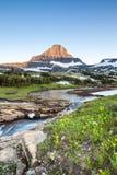 摇石通行证的,冰川国家公园, MT野花草甸 库存图片