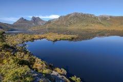摇篮山在湖鸠反射在塔斯马尼亚岛 免版税图库摄影