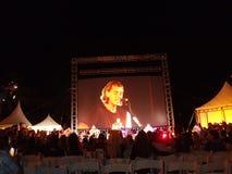 摇滚乐队布什在舞台使用在晚上 库存图片
