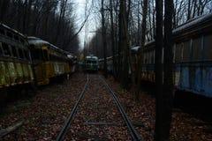 摒弃台车坟园在森林 免版税库存照片
