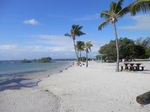 摒弃海滩 免版税库存图片