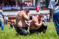 摔跤手土耳其pehlivan在搏斗传统的Kirkpinar的竞争 库存图片