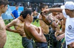 摔跤手有橄榄油被应用于身体在Kirkpinar土耳其油搏斗的节日,爱德 免版税库存照片