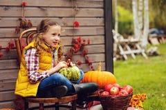 摘在农场的愉快的儿童女孩新鲜的苹果 国家生存概念,舒适季节性装饰 图库摄影