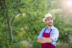 摘果子的花匠 免版税库存照片