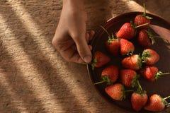 摘草莓果子的手 库存图片