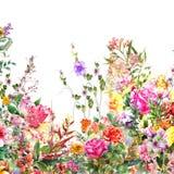 摘要开花水彩绘画 春天多彩多姿的花 库存例证