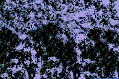 摘要树叶子背景的被弄脏的图象 库存图片