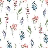 摘要水彩花卉无缝的样式花,枝杈,叶子,芽 手画在白色的葡萄酒花卉例证 向量例证