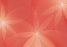 摘要花卉在橙红色背景 库存例证