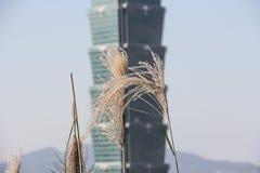 摩天大楼在台北,台湾 图库摄影