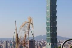 摩天大楼在台北,台湾 库存图片