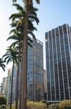 摩天大楼在圣保罗中区  库存图片