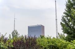 摩天大楼在森林里 免版税图库摄影