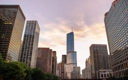 摩天大楼在街市的芝加哥 免版税图库摄影