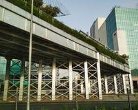 摩天大楼在Gurugram 免版税库存图片
