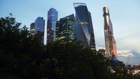 摩天大楼的看法从树的后面 库存图片