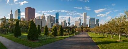 从千年公园的芝加哥摩天大楼 免版税库存照片
