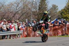 摩托车特技车手-自行车前轮离地平衡特技 库存图片