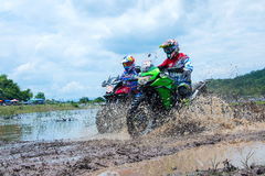 摩托车越野赛,行动,自行车 库存图片