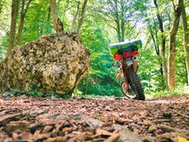 摩托车身分在森林 免版税库存照片