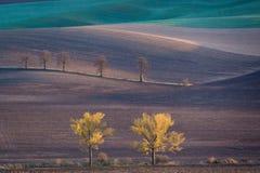 摩拉维亚的秋天小山 库存图片