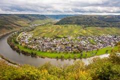 摩泽尔风景和酒村庄厄恩斯特莱茵河流域Pfalz Ge 免版税库存图片