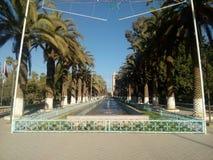 摩洛哥塔鲁丹特backround的最佳的城市 库存照片