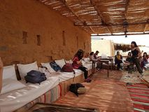 摩洛哥的树荫 免版税图库摄影