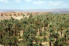 摩洛哥谷横向 库存照片