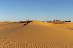摩洛哥 撒哈拉大沙漠沙丘  免版税库存照片
