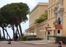 摩纳哥的仪仗队,蒙特卡洛王子Palace和, 图库摄影