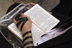 摩西五经读书 库存图片