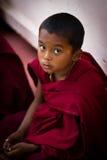 摩诃菩提寺的一个年轻献身者,菩提伽耶,印度 免版税库存图片