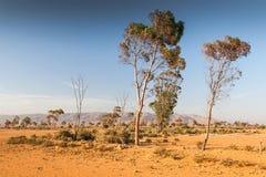 摩洛哥的风景 免版税库存照片