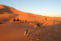 摩洛哥,非洲 库存图片