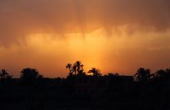 摩洛哥,马拉喀什,棕榈树剪影在日落的 免版税库存照片