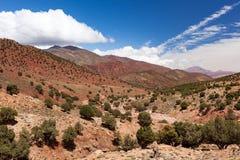 摩洛哥,高地图集风景 在路的圆筒芯的灯树向Ouarza 库存照片