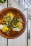 摩洛哥巴巴里人鸡蛋 免版税库存图片